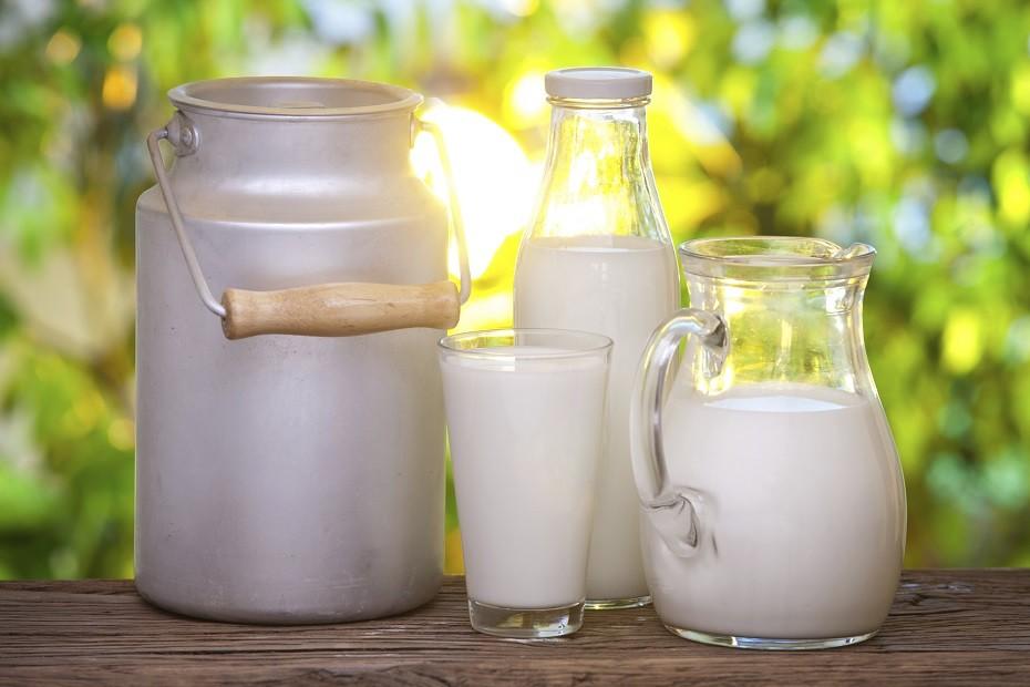 Полезно ли пить молоко взрослым людям? Давайте разберемся!