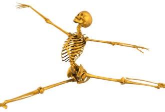 Здоровье костей. Отчего зависит и питание для здоровья костей