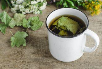 Всё лето пьем чай со смородиновыми листьями, на зиму сушим не первый год