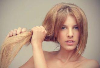 Волосы стали ломкими: поможет ли лечение в домашних условиях? Ломкие волосы: лечение дома разными способами