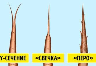 Что состояние волос может рассказать о вашем здоровье