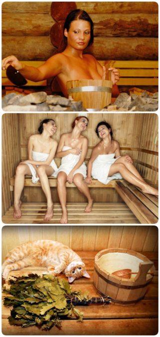 О пользе сауны и бани