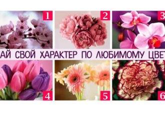 Тест: ваш любимый цветок раскроет главные черты вашего характера