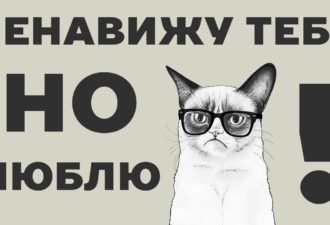 9 причин, почему нужно любить кота