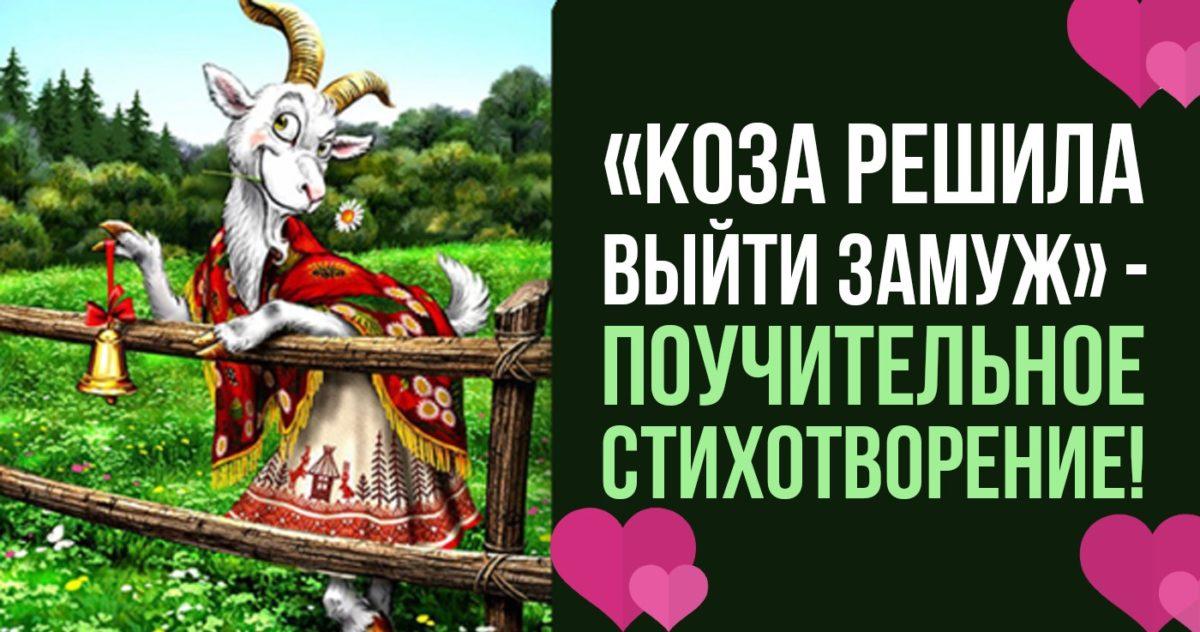 «Коза решила выйти замуж» — поучительное стихотворение!