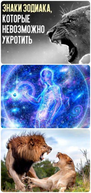 5 знаков Зодиака, которые не поддаются укрощению!