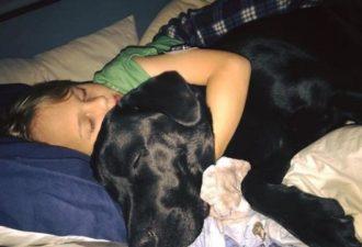Мать проснулась от рычания собаки. Войдя в комнату сына, она остолбенела