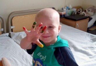 Больной мальчик шил игрушки, чтобы собрать необходимые деньги на свое лечение