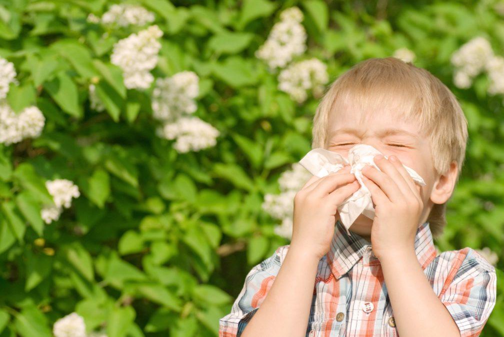 Как понять, что у ребёнка не насморк, а аллергия на цветение?