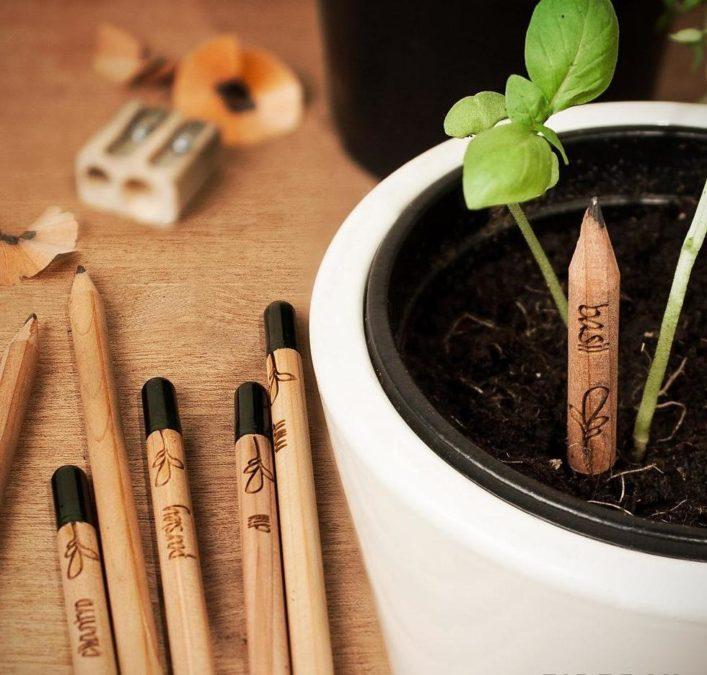 На Филиппинах делают карандаши, которые превращаются в настоящие растения