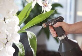 За такой полив ваши цветы будут безмерно благодарны