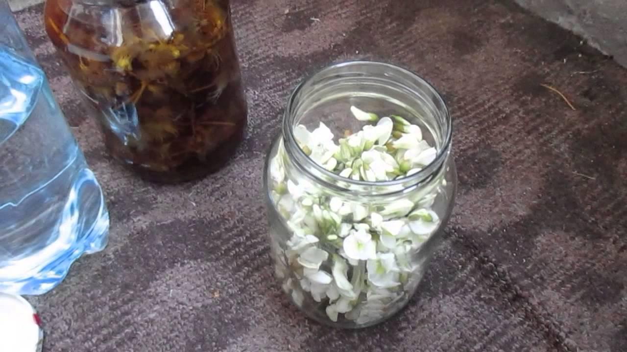 Белая акация - чудодейственный цветок!